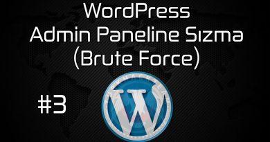 Brute Force - Admin Paneline Sızma