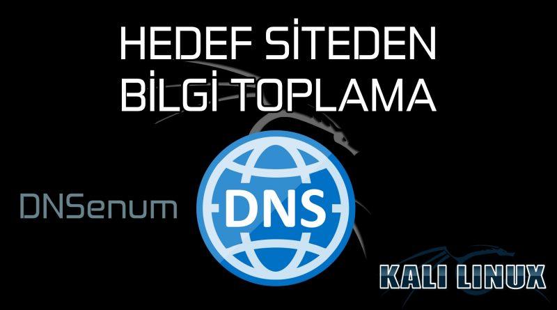 DNSenum Kali Linux