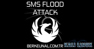 SMS Flood Attack